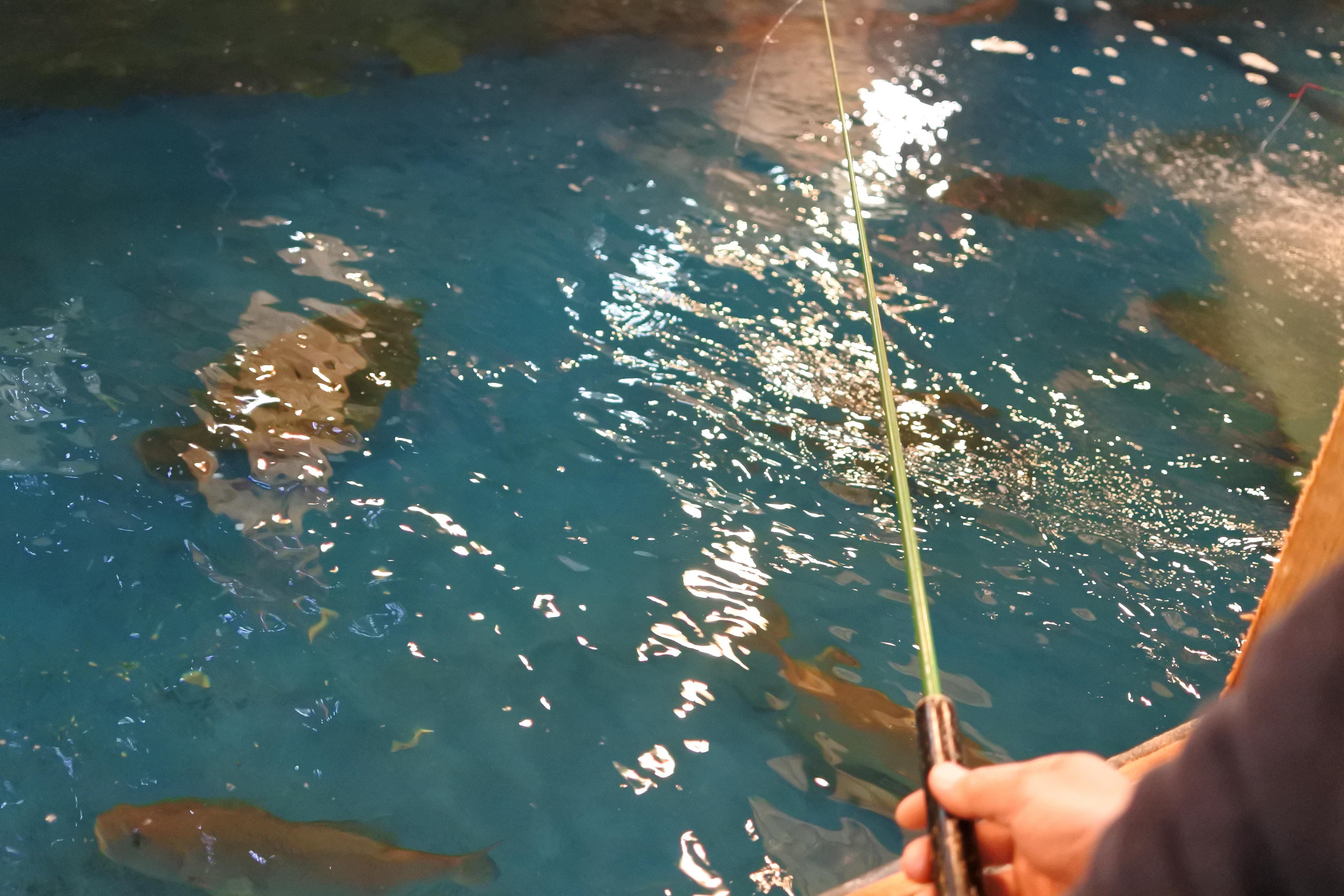 自分で釣った魚が食べられる!『釣船茶屋 ざうお小牧店』で釣り体験をしてきた - DSC 1119 1