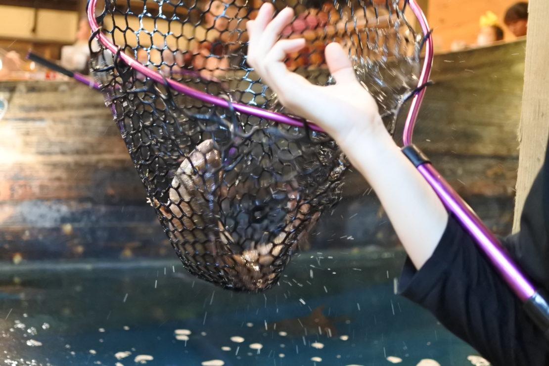 自分で釣った魚が食べられる!『釣船茶屋 ざうお小牧店』で釣り体験をしてきた