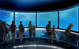世界で人気の子ども向け水族館 『SEA LIFE Nagoya』4月15日誕生 - img 149097 1 260x160