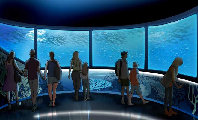 世界で人気の子ども向け水族館 『SEA LIFE Nagoya』4月15日誕生 - img 149097 1 660x400