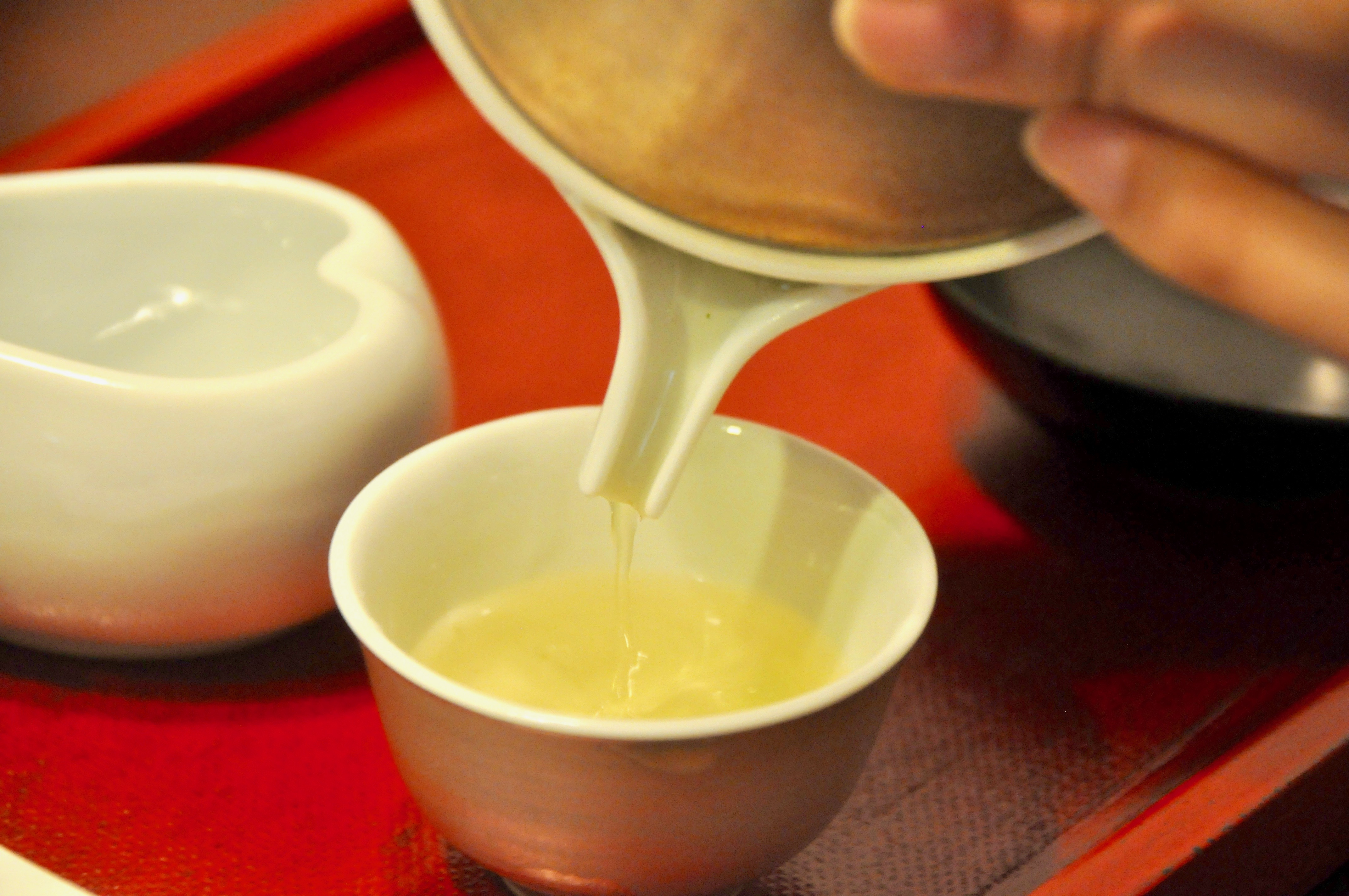 今年もお茶の季節が到来!お茶の価値観が変わる体験、岐阜県東白川村に行ってきた - DSC 0054