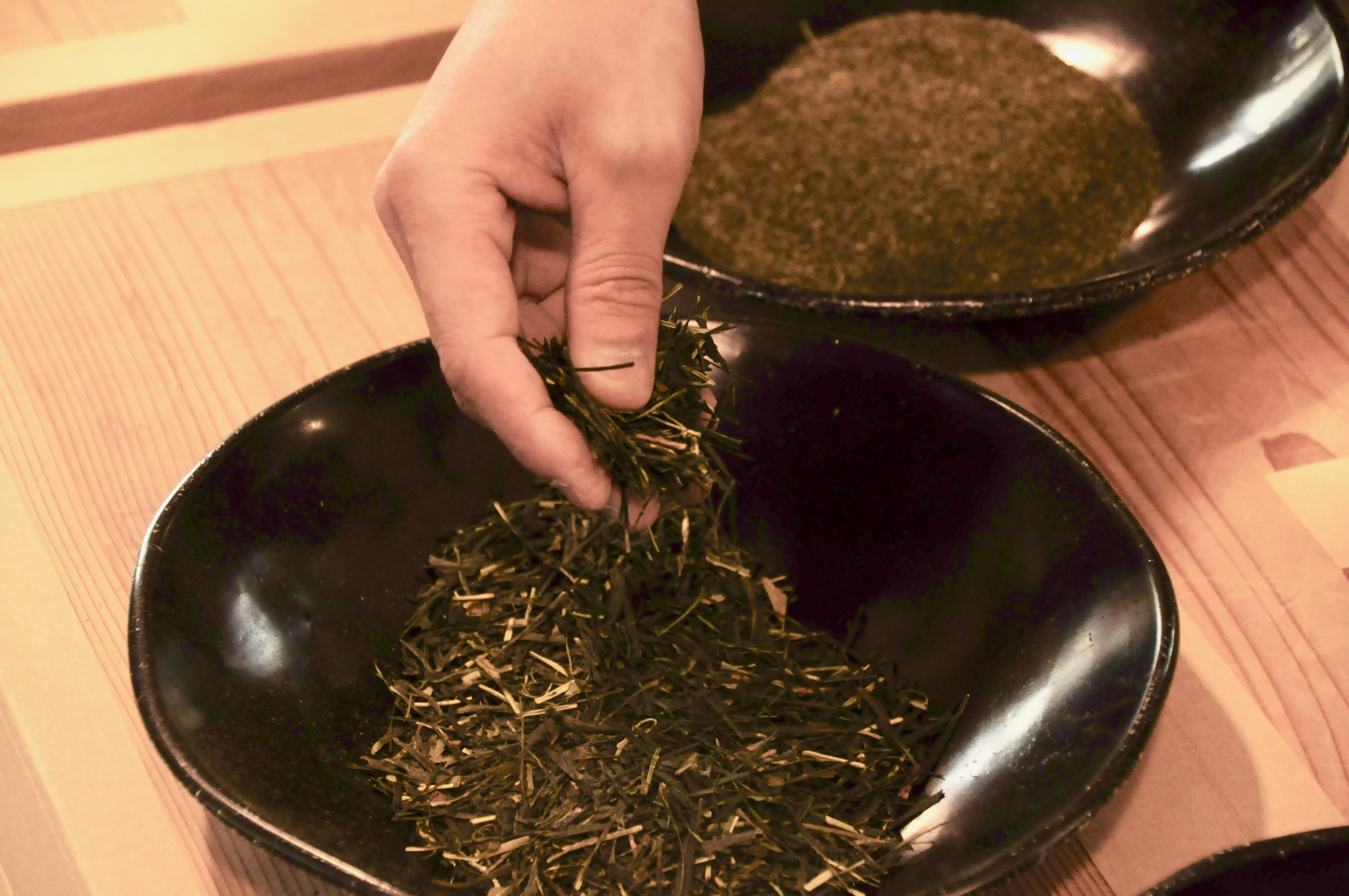 今年もお茶の季節が到来!お茶の価値観が変わる体験、岐阜県東白川村に行ってきた - DSC 1115 1