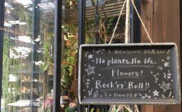 可愛くてロック!名古屋のはずれにあるお花屋さん「in bloom」 - IMG 7136 2 660x400 260x160