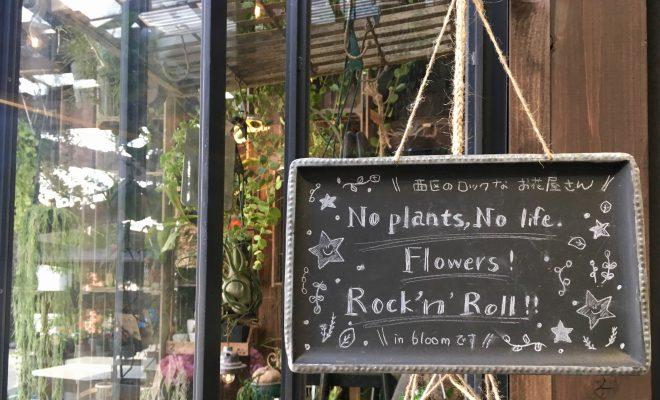 可愛くてロック!名古屋のはずれにあるお花屋さん「in bloom」 - IMG 7136 2 660x400