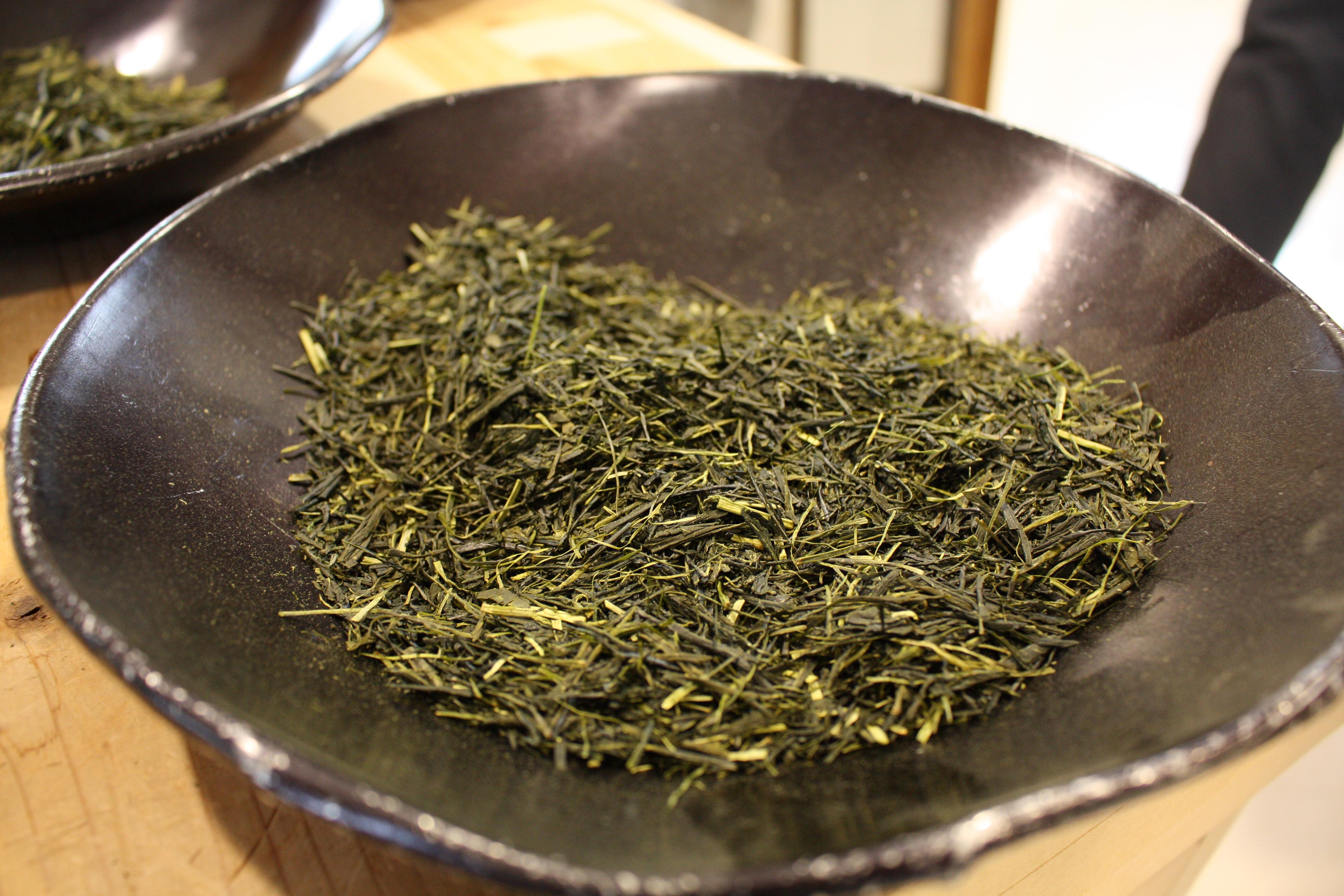 今年もお茶の季節が到来!お茶の価値観が変わる体験、岐阜県東白川村に行ってきた - IMG 7533