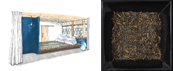 今年もお茶の季節が到来!お茶の価値観が変わる体験、岐阜県東白川村に行ってきた - mingle 2F