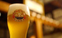 ビールと食の祭典『岐阜ビール祭り~柳ケ瀬ビッグパブ』、岐阜駅前で6月2~3日に - gihu 260x160