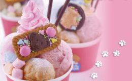 【6/12(火)オープン!】ポップでかわいい!大須「シェリーズアイスクリーム」 - d27360 4 398875 4 260x160