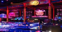 金魚が誘う、魅惑的な世界。『アートアクアリウム2018』が名古屋・松坂屋で開催 - fb0a52c872b9c0d3d92d57c12a2bc6cd 1 210x110