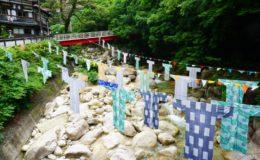 名古屋から車で約1時間!御在所山で有名な三重県菰野町で自然を満喫してきた! - s DSC00480 260x160