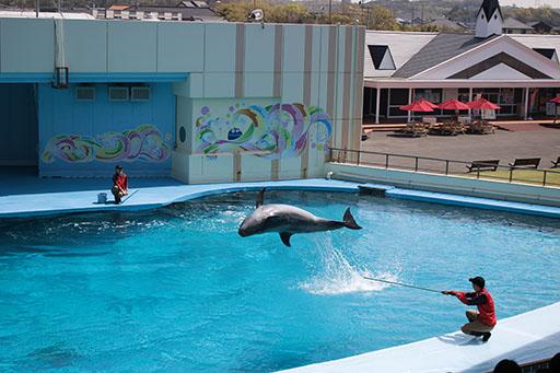 体験型水族館!「南知多ビーチランド」で夏限定の海の生き物とふれあい体験をしよう - 233445