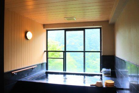 デートや女子会に最適!菰野・湯の山温泉「鹿の湯ホテル」で日帰り会席温泉トリップ