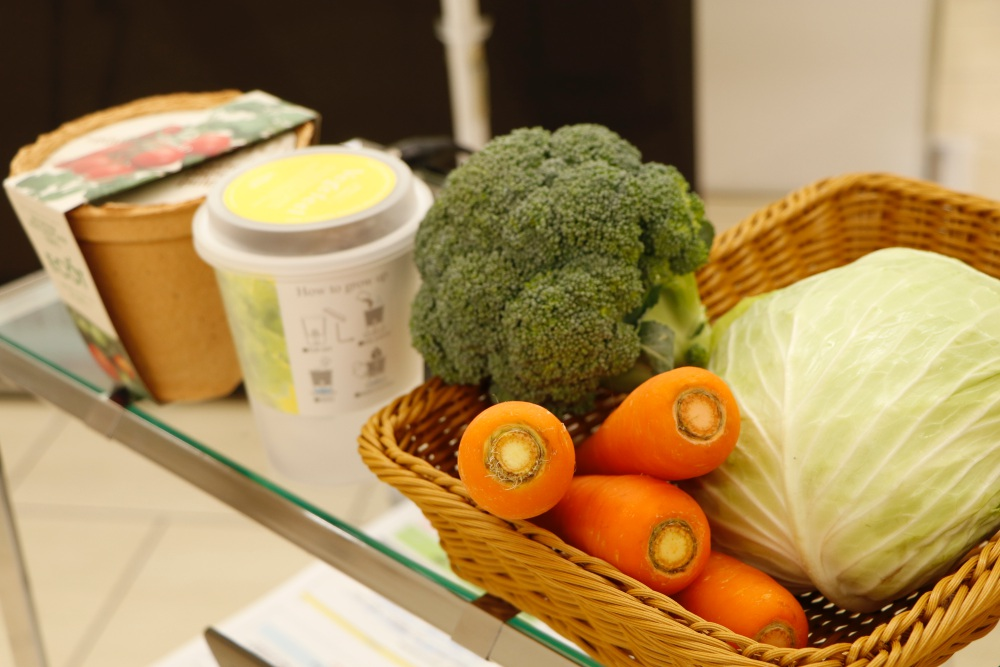 愛知県民は野菜摂取量が全国ワースト!? 故郷のピンチに小学生たちが立ち向かう - MG 6035