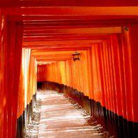 西郷どんの舞台・京都伏見の名水特集も!京都展が松坂屋で2年ぶりに開催中