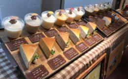 チーズケーキ好き必見!約25種類の濃厚チーズケーキが揃う古民家カフェ - ee10c605b55c454cafc1c4df310e244d 260x160