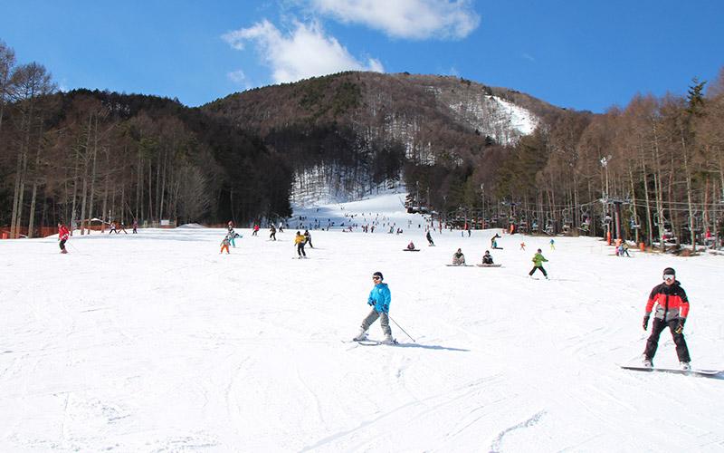 ウィンタースポーツはここで決まり!名古屋からアクセスが良いスキー場7選 - 205cc0dfac59c35c78bbca71321ee6ff