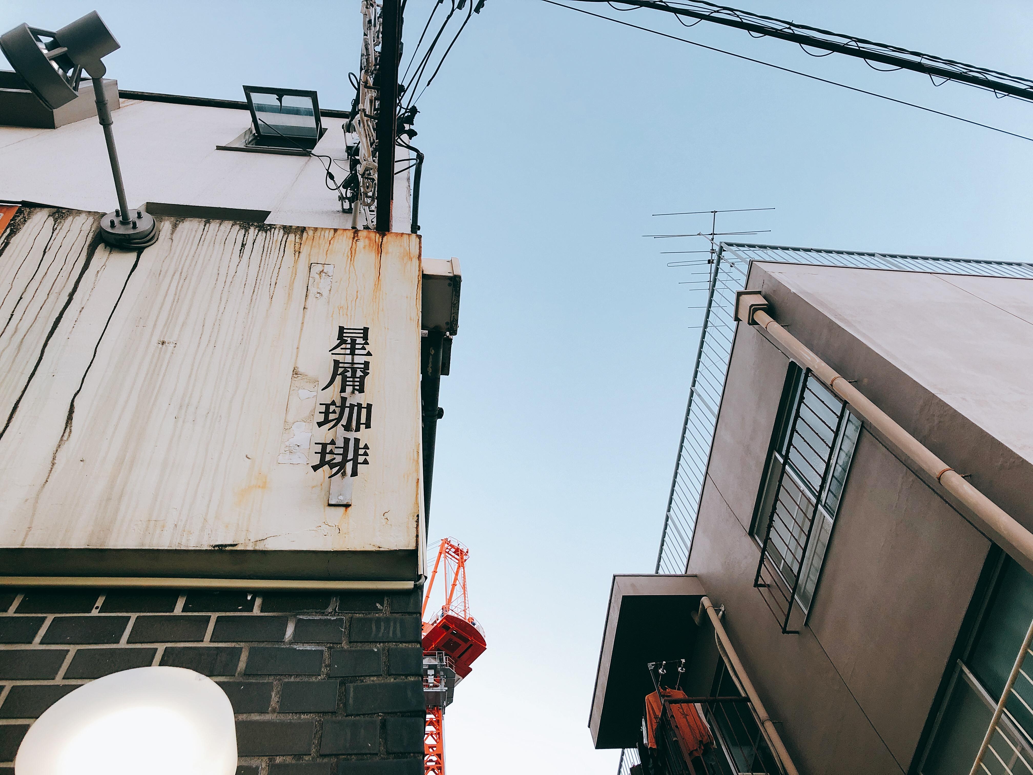 ひとりでも、ふたりでもリラックスタイムを。本山のカフェ「星屑珈琲」 - hoshikuzu 01