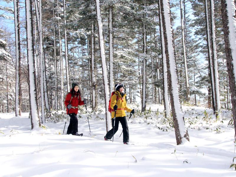 ウィンタースポーツはここで決まり!名古屋からアクセスが良いスキー場7選 - st18 1