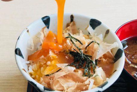 ねこまんまや定食を食べて猫助け!岐阜市に「さび食堂」がオープン
