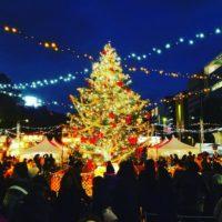 今年で6回目!ヨーロッパ伝統クリスマスマーケットが久屋大通で開催