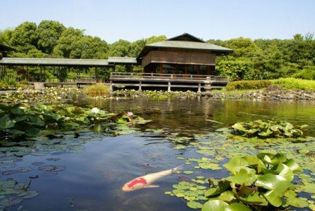 白鳥庭園が「異界庭園」へと変身!アートイベント『ゴエンナーレ』が開催へ
