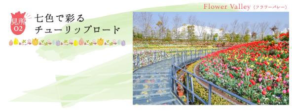 ラグーナテンボスで春を彩る「チューリップまつり」が開催中! - tulip04