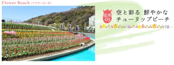 ラグーナテンボスで春を彩る「チューリップまつり」が開催中! - tulip05
