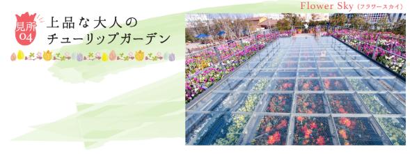 ラグーナテンボスで春を彩る「チューリップまつり」が開催中! - tulip06