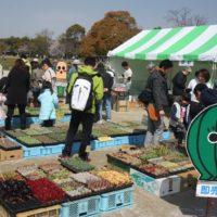 サボテンフェア2019×春日井名物グルメ王座決定戦が今年も同時開催!