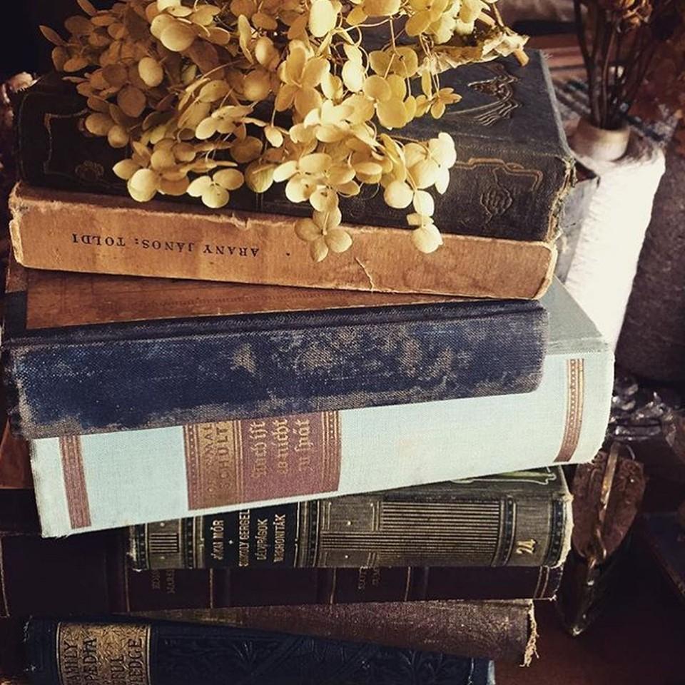 新たなお気に入りと出会えるかも!蔦屋書店の「名古屋みなと蚤の市」でお買い物 - 4