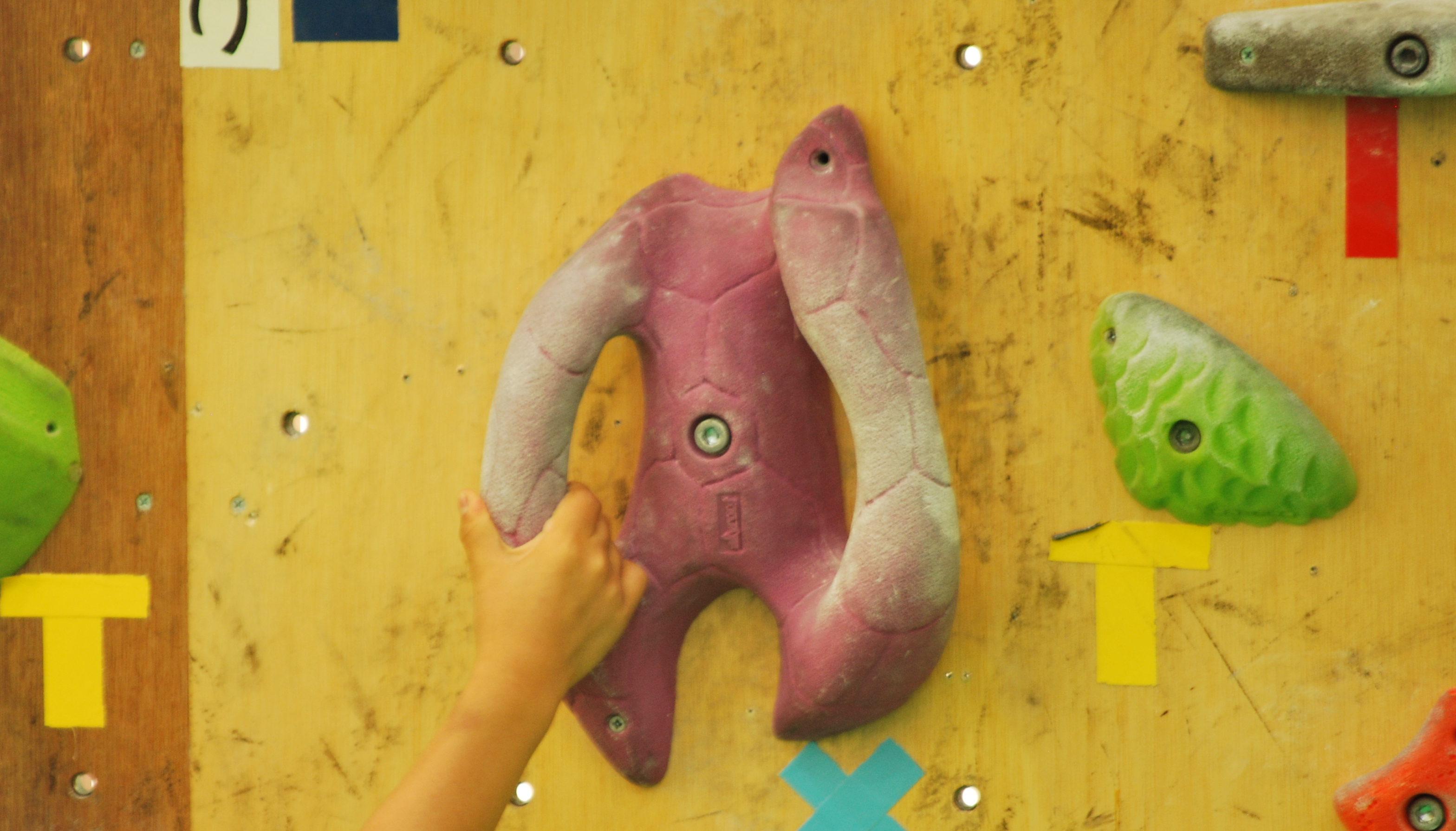 大人の運動だけでなく子どもの習い事に!大垣のボルダリングパーク「ひょうたん島」 - DSC 1102 e1561604513286