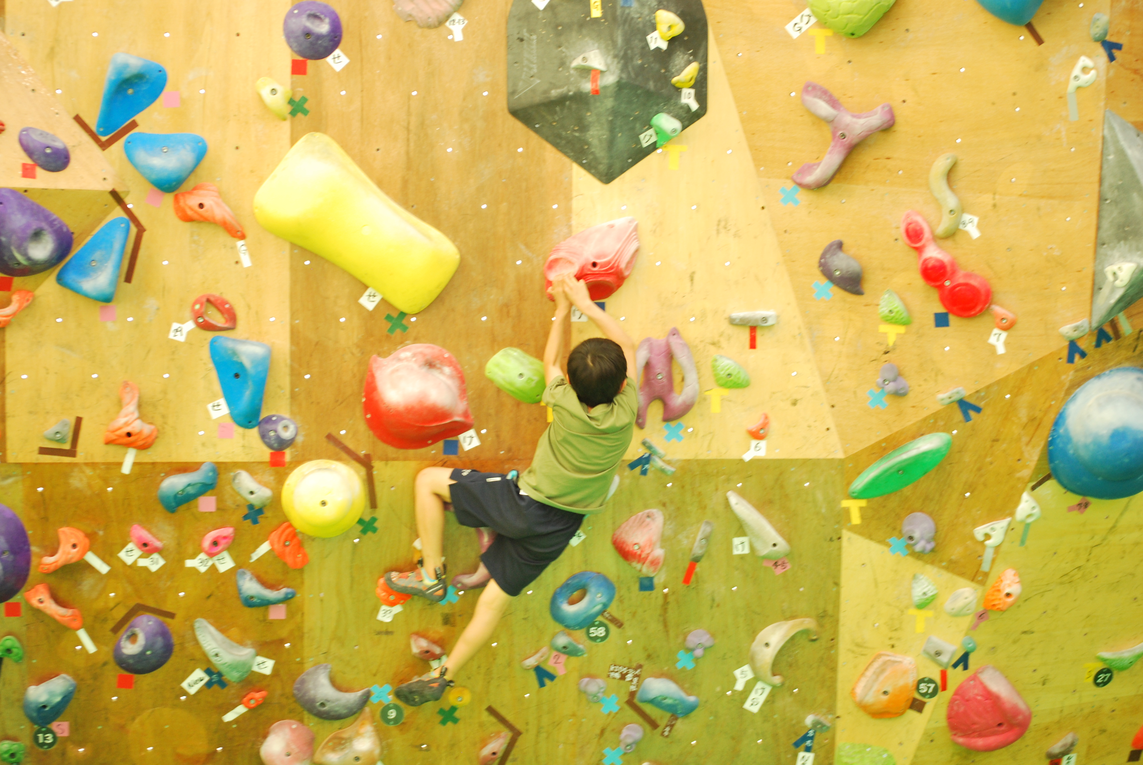 大人の運動だけでなく子どもの習い事に!大垣のボルダリングパーク「ひょうたん島」 - DSC 1114