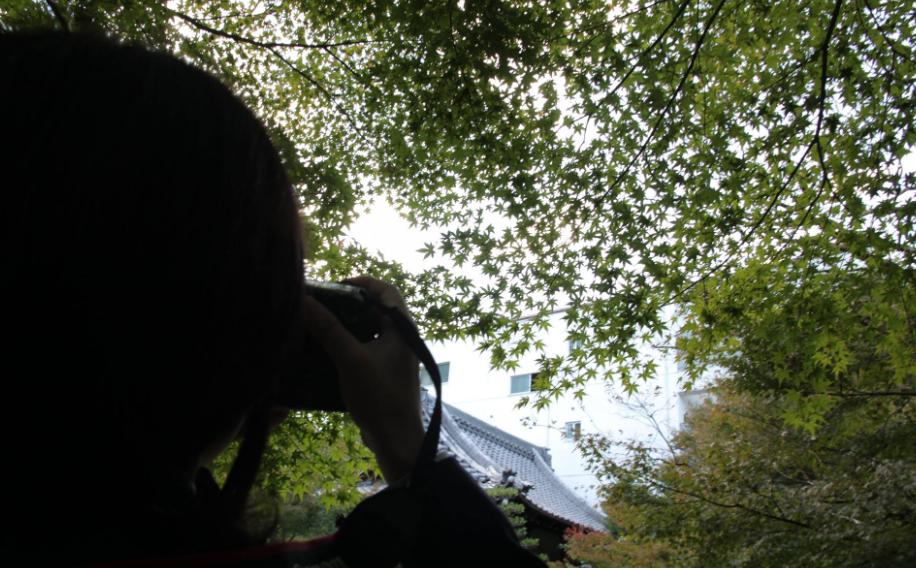 フォトジェニックな見所いっぱい!秋のぶらり散歩にぴったりな「文化のみち」 - 1f8cd23b7ab643d72cbd1bde611d5b52