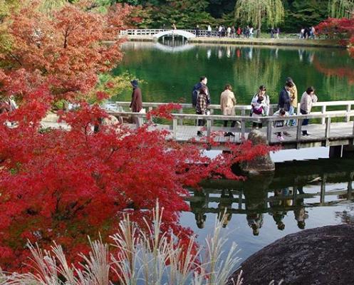 フォトジェニックな見所いっぱい!秋のぶらり散歩にぴったりな「文化のみち」 - 2dfcf1adf0034bf9fc0a1b72a30ca161