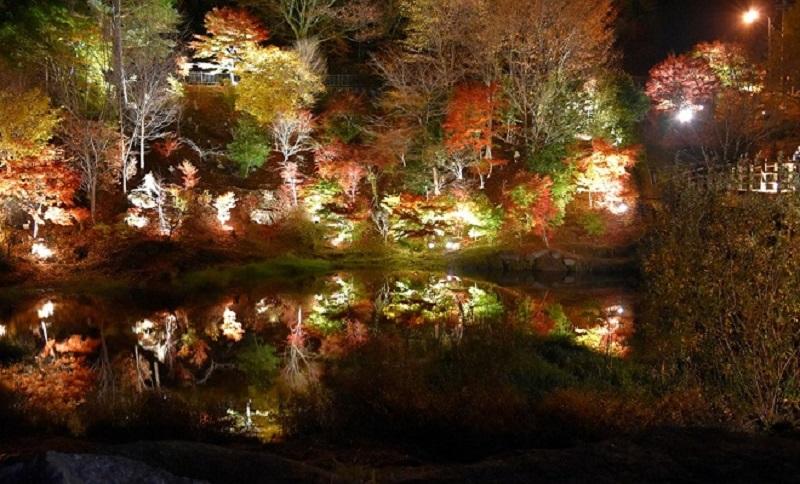 行灯に照らされる街道が美しい!秋の岐阜「馬籠宿場まつり」で歴史ある宿場町へ - DSC 0081