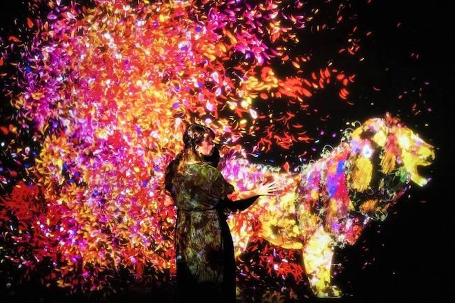 名古屋市科学館「チームラボ★学ぶ!未来の遊園地」で楽しむ、新感覚アート体験!