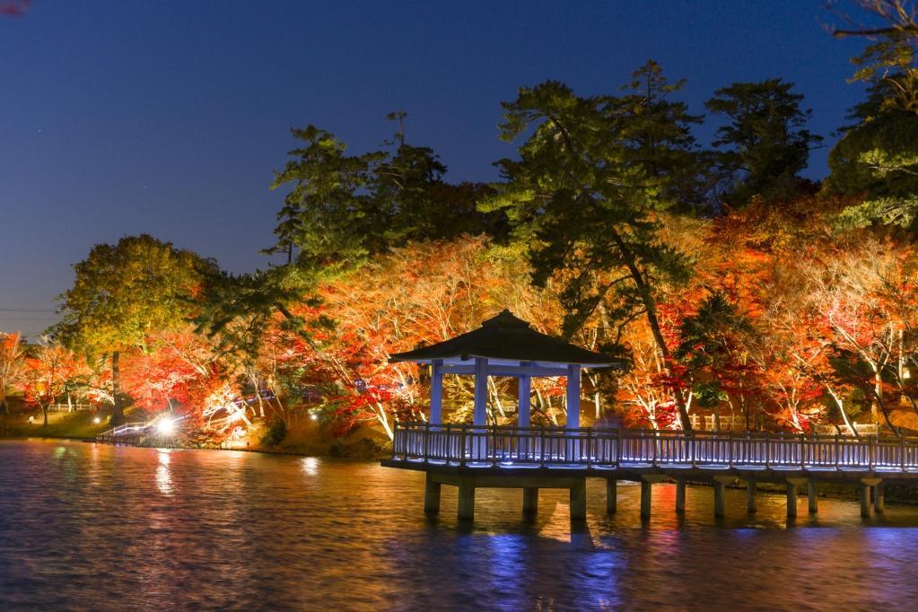 秋限定!岡崎市東公園の紅葉まつりに、あざれあ特製「あにまる御膳」を持って遊びに行こう - 2 1