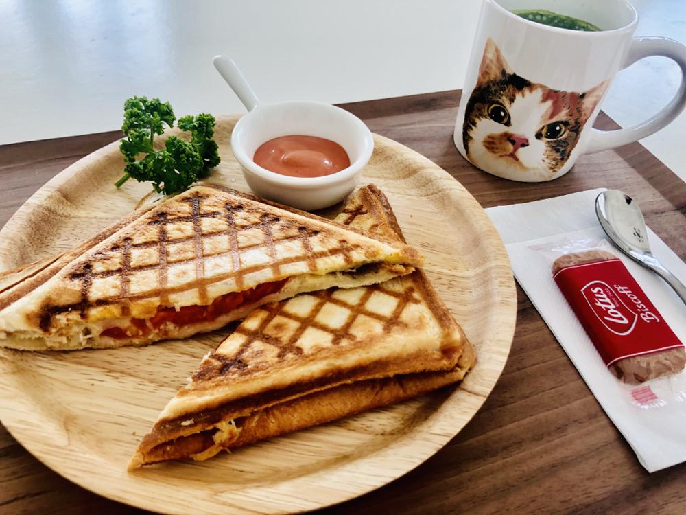 かわいい猫に癒されながら社会貢献できるカフェ「保護猫カフェAelu」 - IMG 9657