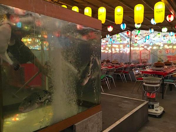 忘年会・新年会におすすめ!名駅近くに「とらふぐ鍋ガーデン」が冬季限定でオープン! - be686f5702e4d3729c38989242a4114f