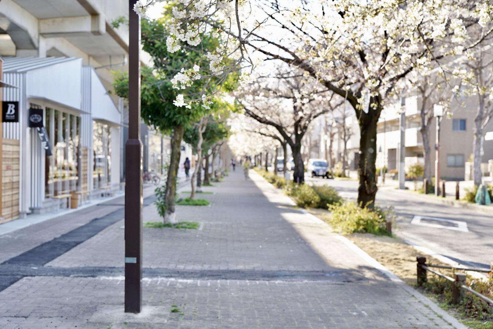 名鉄瀬戸線・高架下の新スポット「SAKUMACHI商店街」に12店舗がオープン! - 20A1117A CF17 47E7 8741 3A677DF1CA2C