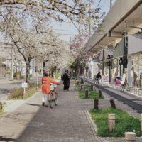 名鉄瀬戸線・高架下の新スポット「SAKUMACHI商店街」に12店舗がオープン!
