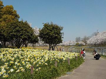 豊かな自然と共に暮らすまち・名古屋市「天白区」 - tempaku3
