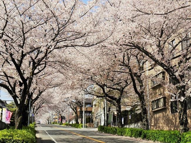 豊かな自然と共に暮らすまち・名古屋市「天白区」 - tempaku7