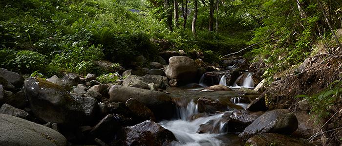 飛騨高山の森から生まれたエッセンシャルオイル「yuica」で、至福のリラックスタイムが叶う - about yuica 002