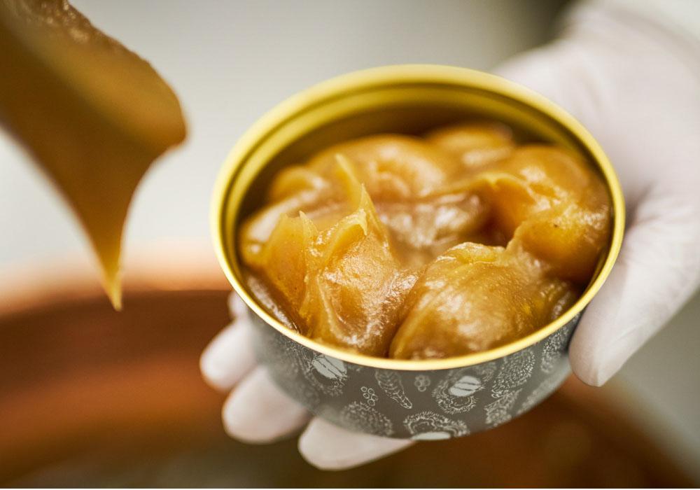 モンブラン好きが厳選!名古屋で食べたい美味しいモンブラン8店【2020年版】 - e2da135618391921c22b168682067d0e